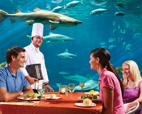 Seaworld Orlando Sea World Tickets Discovery Cove Aquatica Aaa